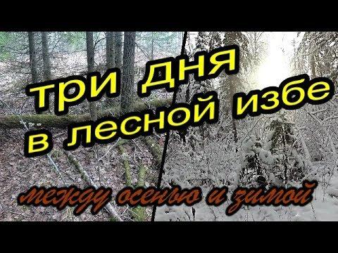 Три дня в Лесной Избе.Между осенью и зимой.