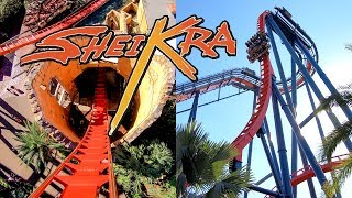 Riding the AWESOME SheiKra Roller Coaster at Busch Gardens Tampa! AMAZING 4K 60fps Front Seat POV