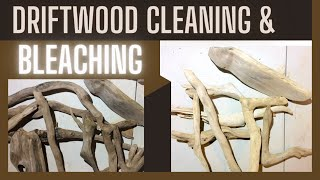 Driftwood Cleaning And Bleaching