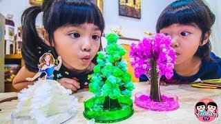 หนูยิ้มหนูแย้ม | กิจกรรมเด็กปลูกต้นไม้กระดาษ Kids Activity - Paper tree