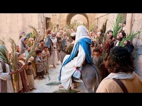 Palm Sunday - Easter / Lent - Catholic Online