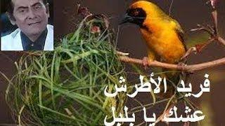 تحميل اغاني مجانا فريد الأطرش عشك يا بلبل 0001