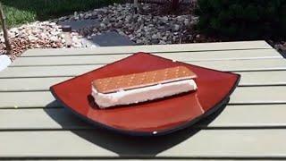 Walmart Ice Cream Sandwich Wont Melt! We Prove It.