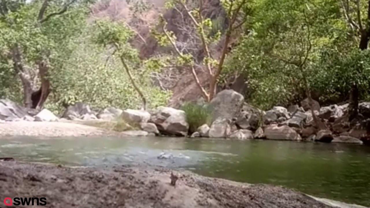 Три индуса хотели снять на камеру как они купаются, а сняли свою смерть