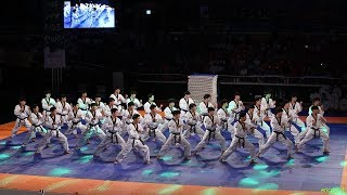2018 제주 한마당 Jeju World Taekwondo Hanmadang,Opening Ceremony,Kukkiwon Demonstration Team 국기원,国技院