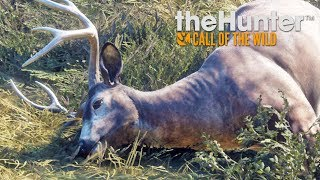 Hunting with Dad | Thehunter: Call of The Wild Live!