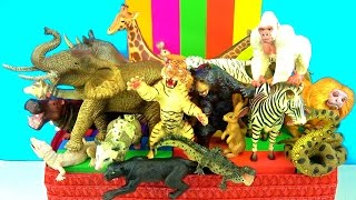 Learn about Wild Animals and their Names - Zoo Animals - Kids Educational Toys - in English