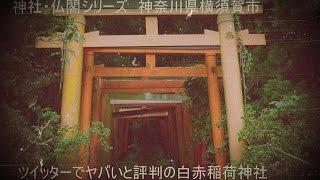 神社・仏閣シリーズ神奈川県横須賀市ツイッターでヤバイと評判の白赤稲荷神社