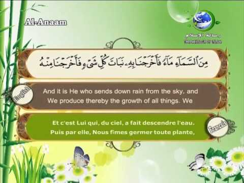6- Al-Anaam  - Translation des sens du Quran en français