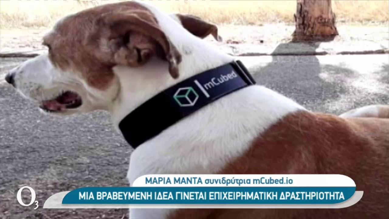 Έξυπνα κολάρα για τον εντοπισμό ζώων | 04/02/2021 | ΕΡΤ