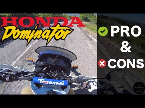 SHOULD YOU BUY A 1991 HONDA DOMINATOR NX 650? [RAW POV]