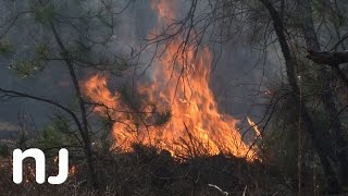 New Jersey fights fire with fire using annual controlled burn