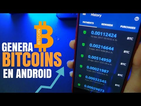 Dinaminės prekybos teisės bitcointalk