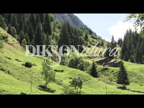 Dikson Natura натуральная линия для волос Косметики Диксон
