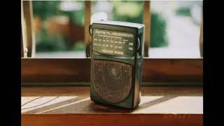 VOICECREW19991101