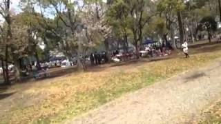 水元公園のイメージ