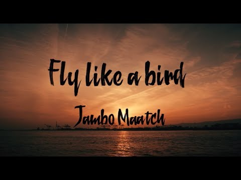 FLY LIKE A BIRD / JUMBO MAATCH