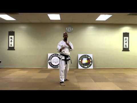 Taekwondo: Back Kick (Dwit Chagi)