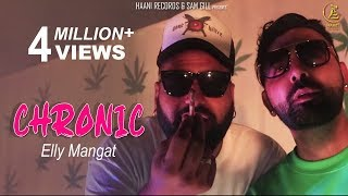 CHRONIC Elly Mangat Feat. Paul G   Veet Baljit   Official HD Video   HAAਣੀ Records