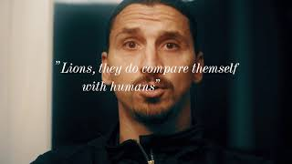 Zlatan and agent Dex - Quotes
