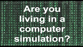 Simulation Theory: Food for Thought