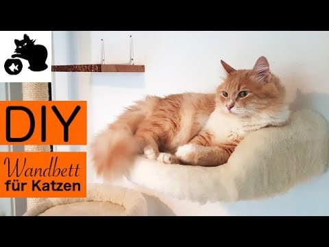 🔥DIY Katzenbett für Wand selber machen - DIY Katzenbett für Kletterwand - Ergänzung DIY Kratzbaum