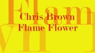 Chris Brown Flame Thrower w/Lyrics [NEW 2009]