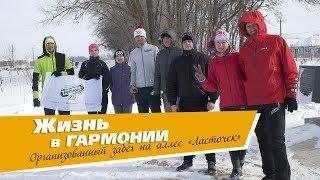 Пробежка на аллее «Ласточек» Участники СКЛБ «Регион26» ЖР «Гармония» Михайловск