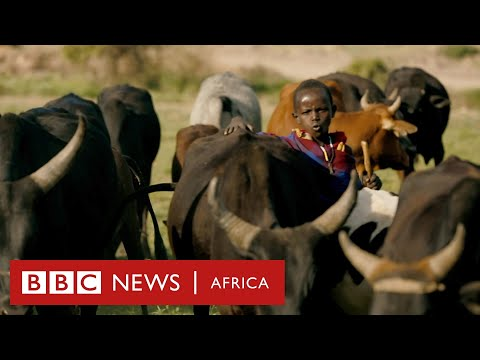 Cattle, Crops and Iron - History Of Africa with Zeinab Badawi [Episode 2]