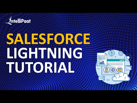 Different types of Data Types and field types - Salesforce Tutorial