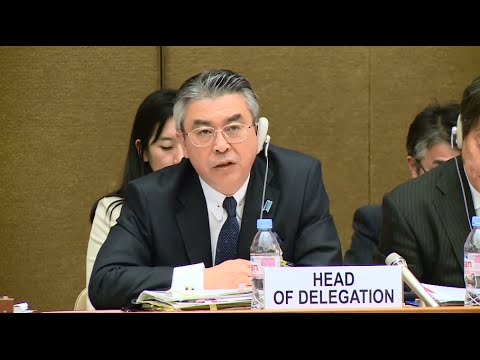 Japan Cannot Claim Sovereign Immunity and Also Insist that WWII Sexual Slavery was Private Contractual Acts
