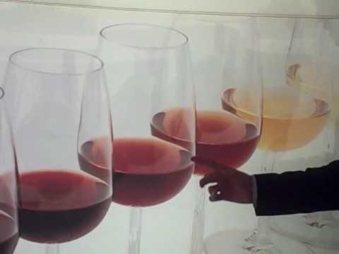 Sandeman Porto Good at Wine Tourism