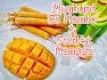 Membuat Es Mambo & Sorbet Mangga