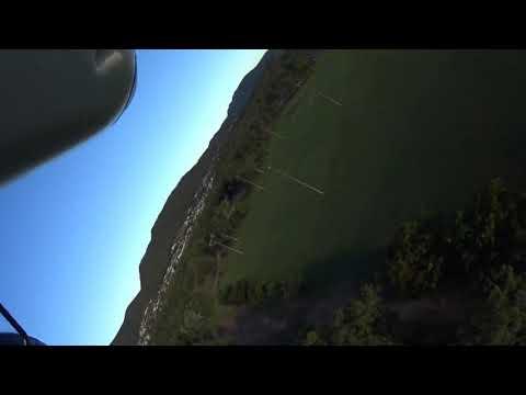 hobbyking-avios-bushmule-rc