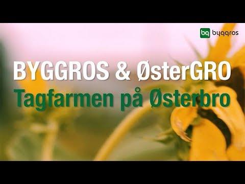 ØsterGro - En tagfarm midt i København