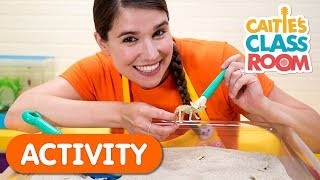 Digging For Dinosaurs | Caities Classroom | Activities For Kids