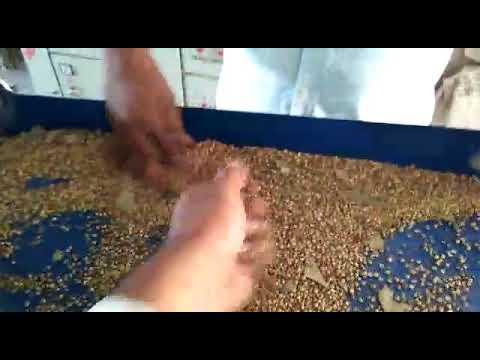 Pulverizer Machine For Masala In Rajkot