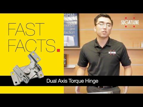 Dual Axis Torque Hinge
