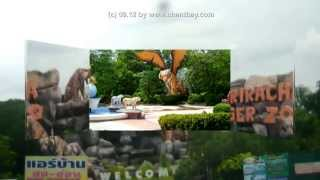 preview picture of video 'Thailand * Si Racha - Sriracha Tigerzoo - Botanischer Garten & Tierpark'
