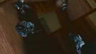SWAT 3: Elite Edition video