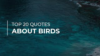 Top 20 Quotes about Birds | Trendy Quotes | Amazing Quotes