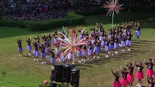 St. Theresa's College, Quezon City - Field Demonstration (Grade 4)