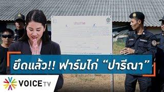 """Talking Thailand -  """"ปารีณา"""" ว่าไง! """"ป่าไม้""""ยึดที่ฟาร์มไก่แล้ว..ส่วน """"พ่อ"""" ส่อต้องคืนที่ชาวบ้าน"""