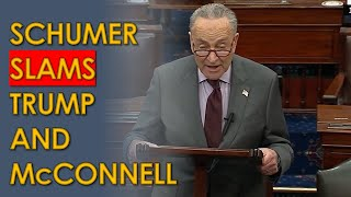 """Chuck Schumer: Trump """"incited an erection""""; SLAMS Mitch McConnell for Defending Filibuster"""