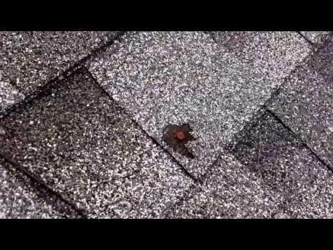 2131 Arthur roof Assesment