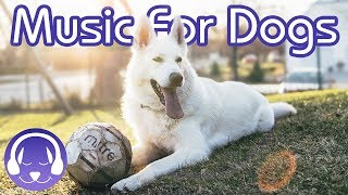 How to Relax Your Dog - 15 Hours of Deep Relaxation Music for Dogs! (2019!)