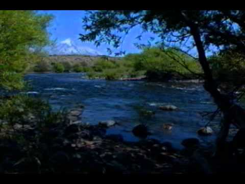 Fly Fishing Argentina with Patagonia Outfitters