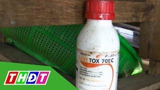 Hậu Giang: 1 gia đình nghi bị đổ thuốc trừ sâu vào bồn nước sinh hoạt | THDT