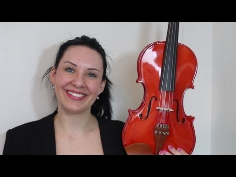 $100 Cecilio CVN200 Violin Review!