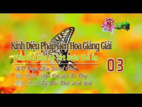 Phẩm Phổ Môn Bồ Tát Quán Thế Âm Thứ Hai Mươi Lăm 3/10
